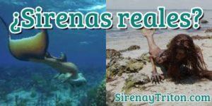 ¿Sirenas reales? Verdad o falso